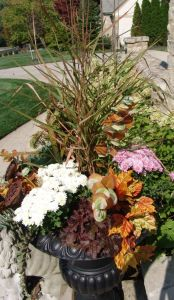 Artificial stems of eucalyptus, sedum, dried pods and oak leaves supplement the live fall plantings.